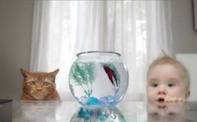 В копилку родителей: развиваем годовалого малыша. Стишки.
