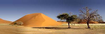 Мираж в пустыне - ассоциативный тест
